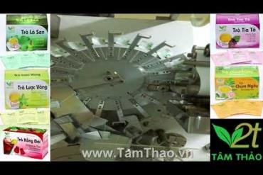 Quy trình sản xuất trà thảo dược tại công ty Tâm Thảo