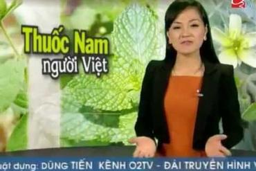 Trà Chùm Ngây - Công ty Tâm Thảo